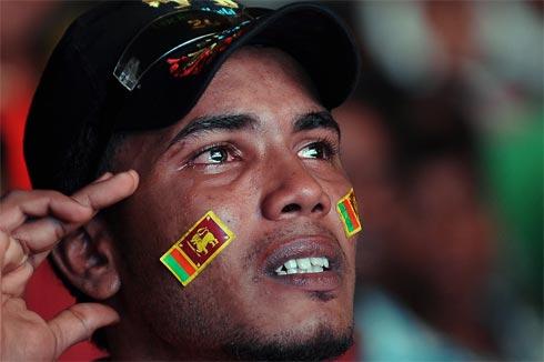 Cricket-1303664400.jpg