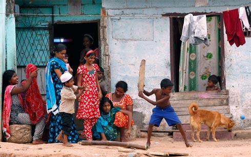 cricket-11-1303664400.jpg