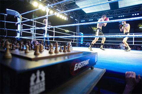 chess-boxing-5aa-1305997200.jpg